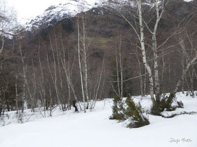 P1210722 - Chía con MasPirineo, es mucha sierra. Valle de Benasque