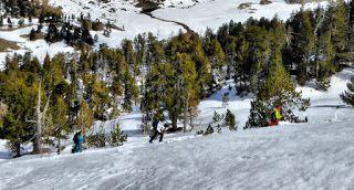 P1220067 fhdr - Bosque de Paderna, estudiando.Valle de Benasque.