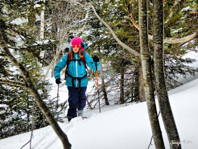 P1220142 fhdr - Canadá del Valle de Benasque, bosque de Paderna.