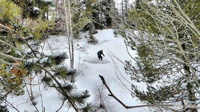 P1220160 fhdr - Canadá del Valle de Benasque, bosque de Paderna.