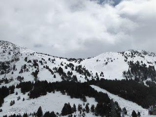 P1220781 - Otro Gallinero con nieve nueva, Cerler.
