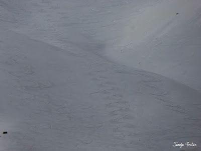 P1240950 - Primera esquiada de Mayo en Cerler.