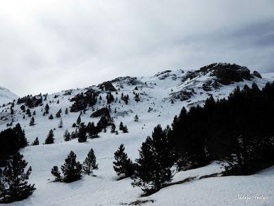 P1250158 - Nevadita en la Tuca de Castanesa 2 858m. Valle de Benasque.
