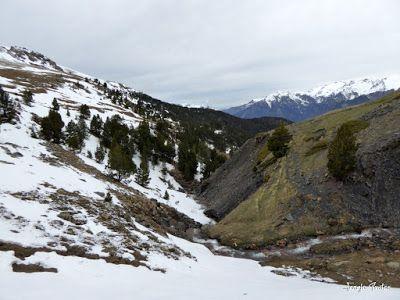 P1250220 - Nevadita en la Tuca de Castanesa 2 858m. Valle de Benasque.