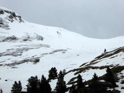 P1250231 - Nevadita en la Tuca de Castanesa 2 858m. Valle de Benasque.