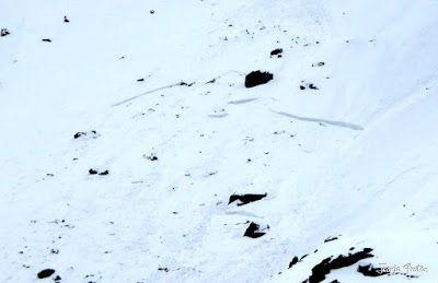 P1250312 - Otro Gallinero con nieve nueva, Cerler.