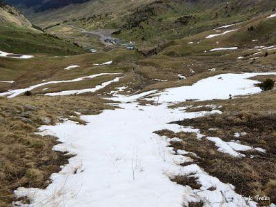 P1250315 - Otro Gallinero con nieve nueva, Cerler.