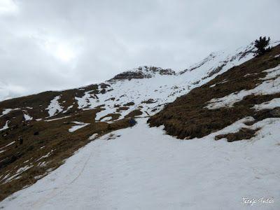P1250320 - Otro Gallinero con nieve nueva, Cerler.