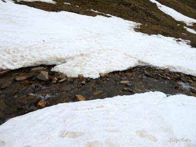 P1250323 - Otro Gallinero con nieve nueva, Cerler.