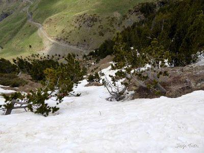 P1250613 - Repetimos y nevando en Roques Trencades, Cerler.
