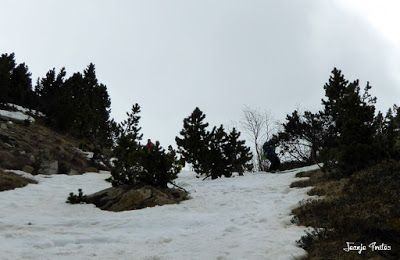 P1250614 - Repetimos y nevando en Roques Trencades, Cerler.