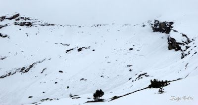 Panorama1 1 - Otro Gallinero con nieve nueva, Cerler.
