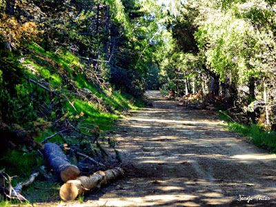 P1260842 fhdr - He vuelto a Las Tres Cascadas de Cerler, Valle de Benasque.