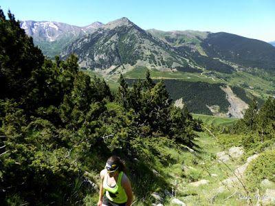 P1270087 - Subida a Picalbo (2.270 m), Cerler