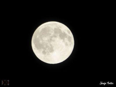 P1270491 - Luna llena y calima, calor en el Valle de Benasque.
