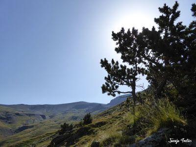 P1270664 - Entre sarrios por Ardonés, Valle de Benasque.