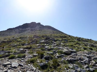 P1270670 - Entre sarrios por Ardonés, Valle de Benasque.