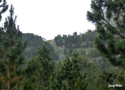 P1280059 1 - Subiendo al pico Sacroux, Valle de Benasque