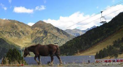 P1290593 - Andorra, el verdadero país de los Pirineos.
