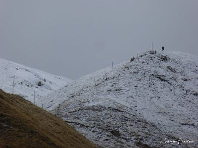 P1300113 - Nevada, ilusiones y Gallinero de Cerler (Valle de Benasque)