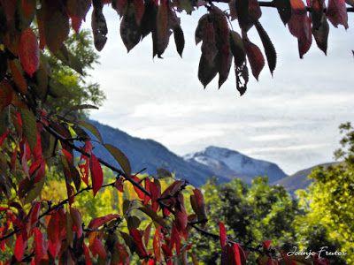 P1300294 fhdr - Colores cálidos es otoño en Cerler, Valle de Benasque.