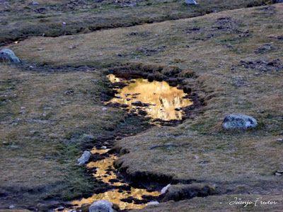 P1300747 - Coll de Toro, Valle de Benasque con Vall d'Aràn.
