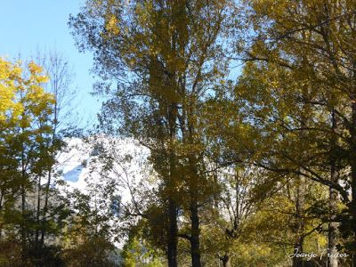 P1300915 - Primera nevada de noviembre en el Valle de Benasque.