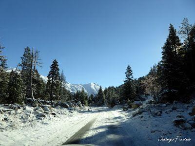 P1300932 - Primera nevada de noviembre en el Valle de Benasque.