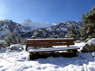 P1300948 - Primera nevada de noviembre en el Valle de Benasque.
