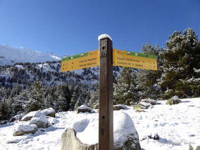 P1300958 - Primera nevada de noviembre en el Valle de Benasque.