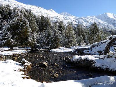 P1300995 - Primera nevada de noviembre en el Valle de Benasque.