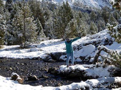 P1300996 - Primera nevada de noviembre en el Valle de Benasque.