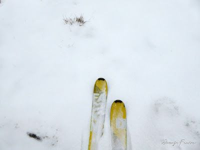 P1310071 - Primera esquiada por Llanos del Hospital, Valle de Benasque.