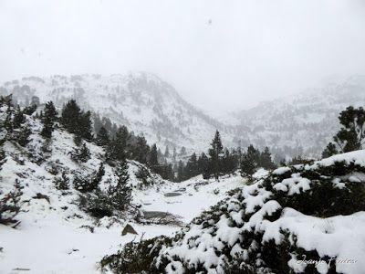 P1310103 - Primera esquiada por Llanos del Hospital, Valle de Benasque.