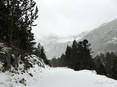 P1310120 - Primera esquiada por Llanos del Hospital, Valle de Benasque.