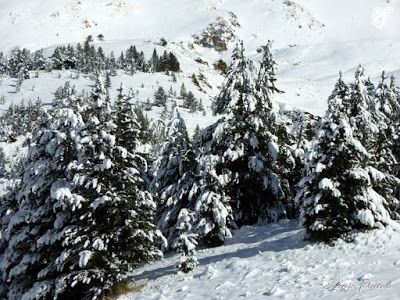P1310524 - Abrimos oficialmente la temporada de skimo en Cerler.