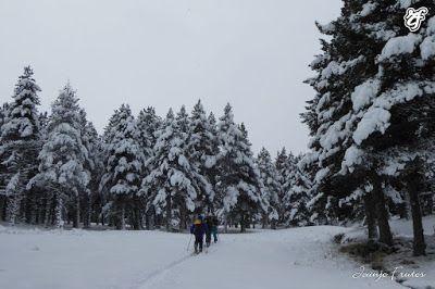 P1310647 - Rincón del Cielo muy nevado, Cerler (Valle de Benasque)