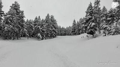 IMG 20170116 113832 001 - Otro día de norte que no afecta a Cerler.