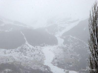 P1320639 - Ya tocaba, vuelve a nevar en Cerler, Valle de Benasque.