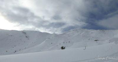 P1320695 - Y la catamos, powder en Cerler. Valle de Benasque.