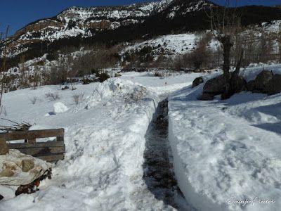 P1000702 - Fotos del Valle de Benasque, pedazo de febrero en Cerler..