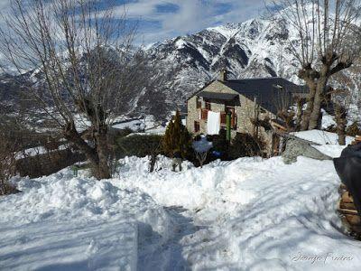 P1000705 - Fotos del Valle de Benasque, pedazo de febrero en Cerler..