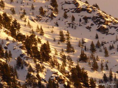 P1000724 - Fotos del Valle de Benasque, pedazo de febrero en Cerler..
