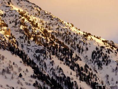 P1000725 - Fotos del Valle de Benasque, pedazo de febrero en Cerler..