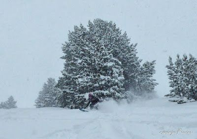 P1030037 fhdr - Nevada de invierno en Cerler, pero es primavera ...