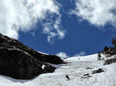 P1040406 fhdr 001 - Nos ha nevado en el pico de Castanesa, Valle de Benasque.