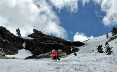 P1040433 fhdr 001 - Nos ha nevado en el pico de Castanesa, Valle de Benasque.