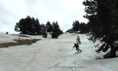 P1040469 - Nos ha nevado en el pico de Castanesa, Valle de Benasque.