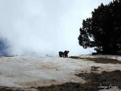 P1040473 - Nos ha nevado en el pico de Castanesa, Valle de Benasque.
