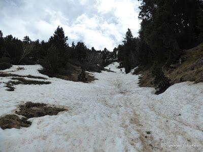 P1040499 - Nos ha nevado en el pico de Castanesa, Valle de Benasque.